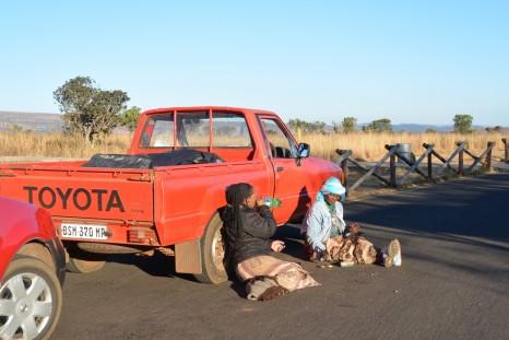 トヨタカーにもたれてくつろぐ女性たち